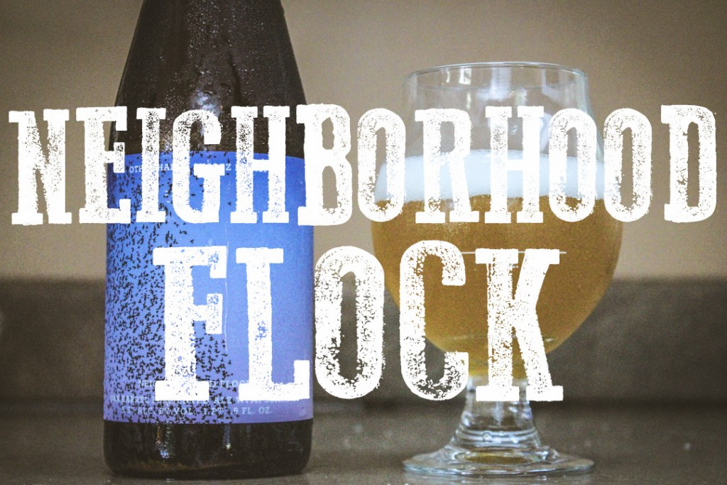 NEIGHBORHOOD FLOCK BLOG