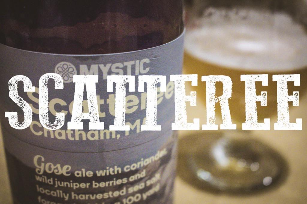 scatteree-blog