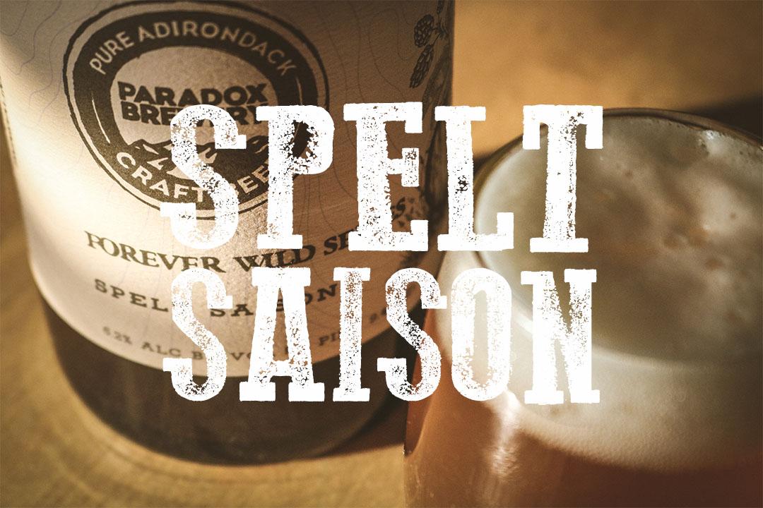 PARADOX SPELT SAISON